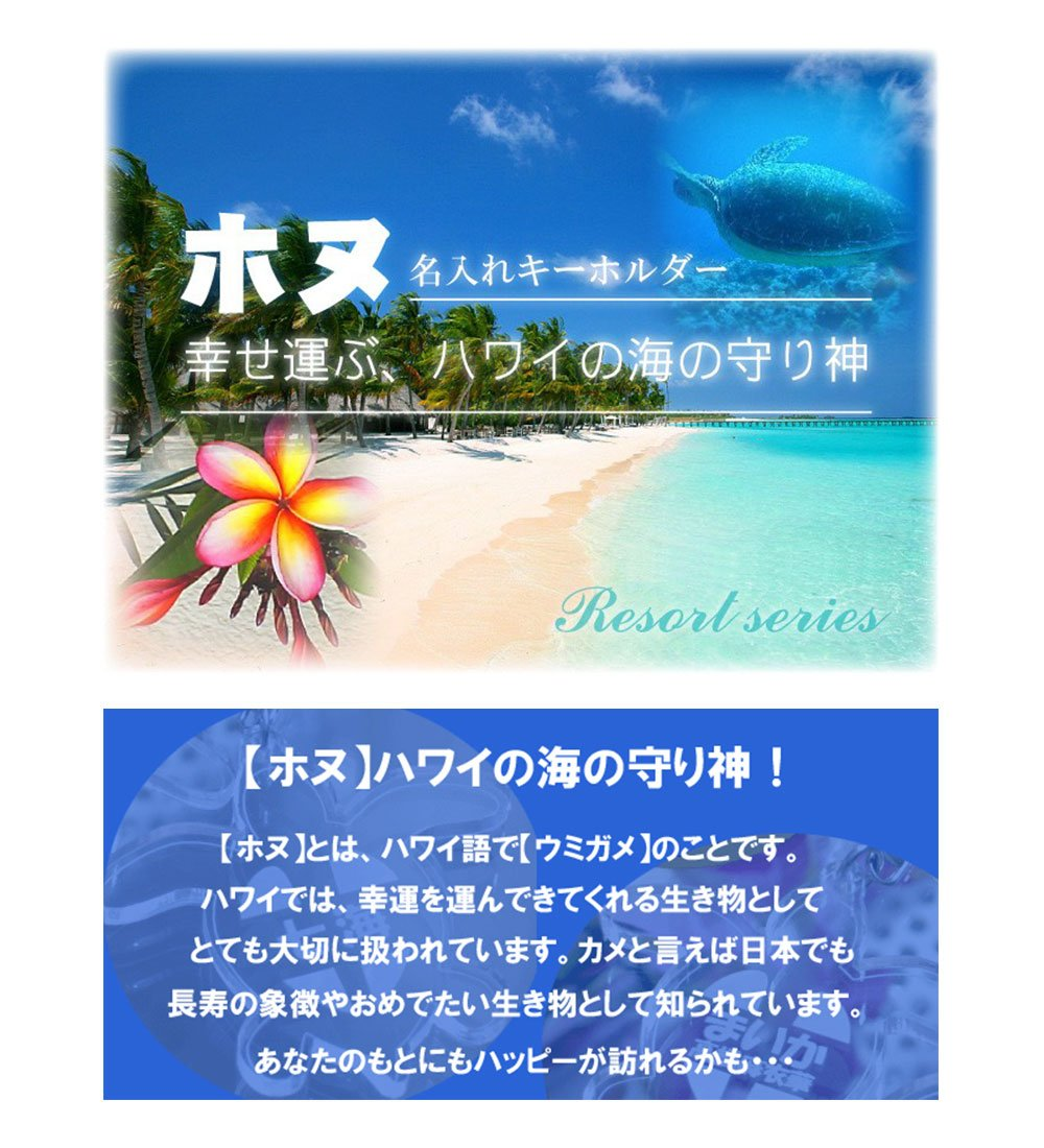 ホヌはハワイの海の守り神です