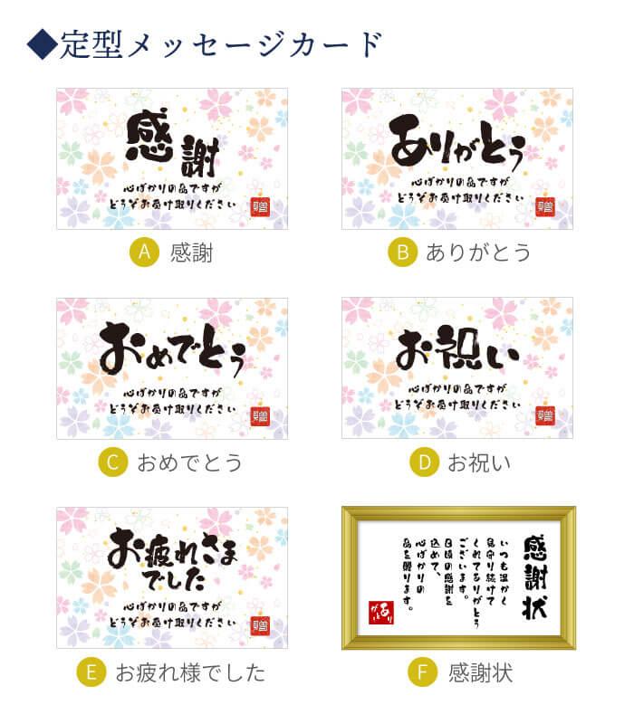 定型メッセージカード詳細