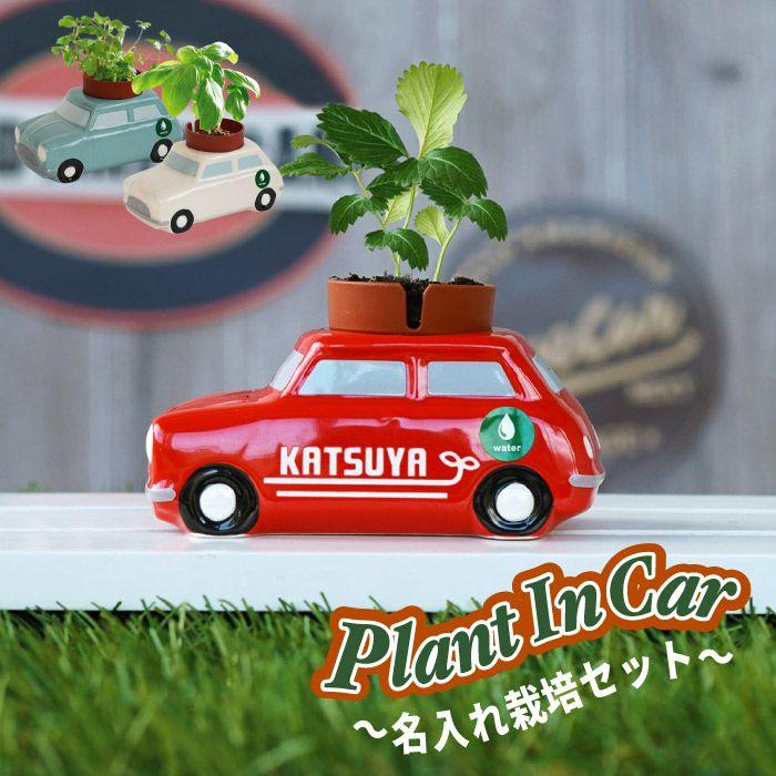 植物栽培セット ミニカー