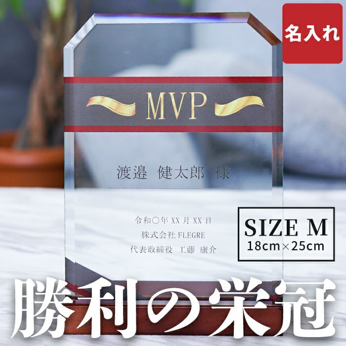名入れ ガラス 表彰 盾 サイズ M